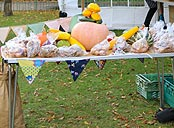 Produce stall with pumpkins and squash